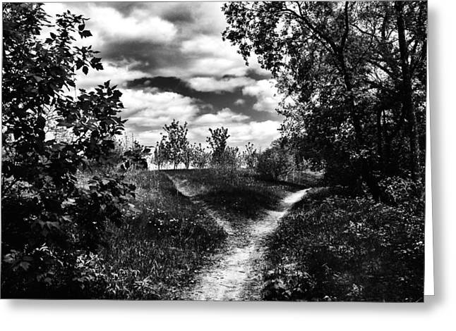 Fork In The Path Greeting Card by Karen Dawson