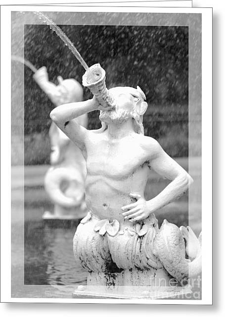Forsyth Fountain - Black And White 1 Greeting Card by Carol Groenen
