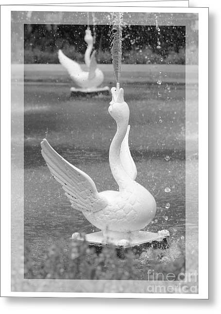 Forsyth Fountain - Black And White 3 Greeting Card by Carol Groenen
