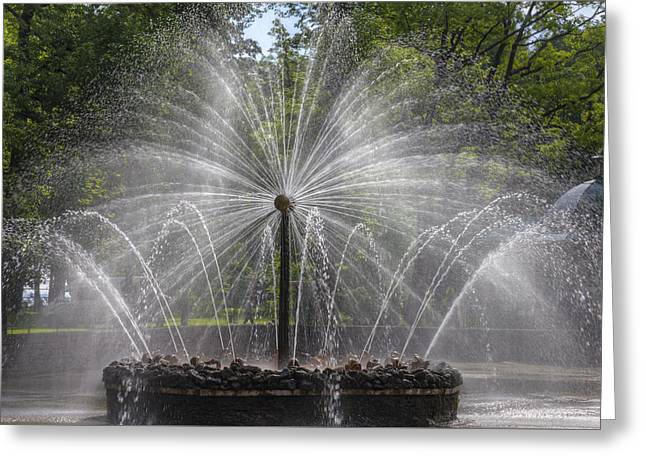 Fountain  Peterhof Palace  St Petersburg   Russia Greeting Card by Clare Bambers