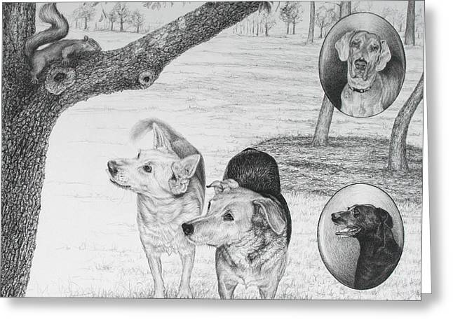 Four Dogs And A Squirrel Greeting Card