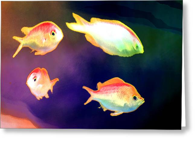 Four Fish Greeting Card by Marc McAllister