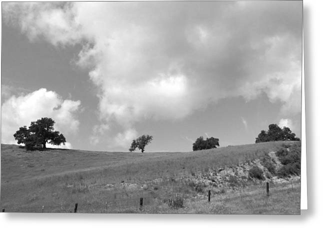 Greeting Card featuring the photograph Four On The Hill by Kathleen Grace