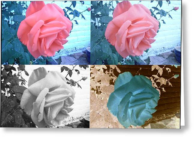 Four One Rose Greeting Card