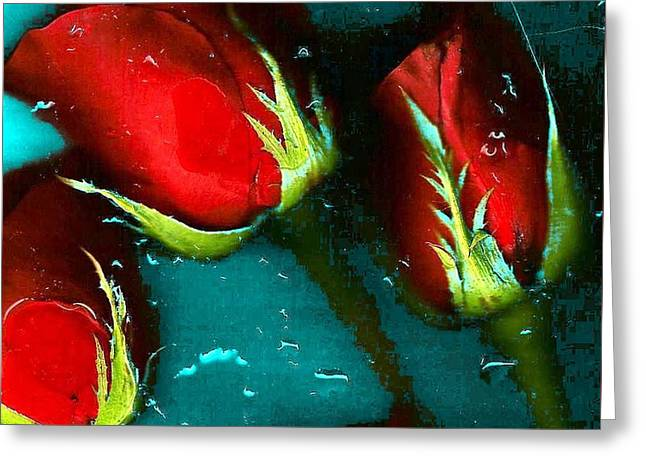 Four Roses Greeting Card by Carolyn Repka