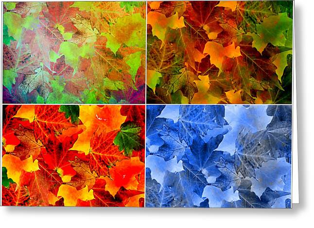 Four Seasons In Abstract Greeting Card by Lourry Legarde