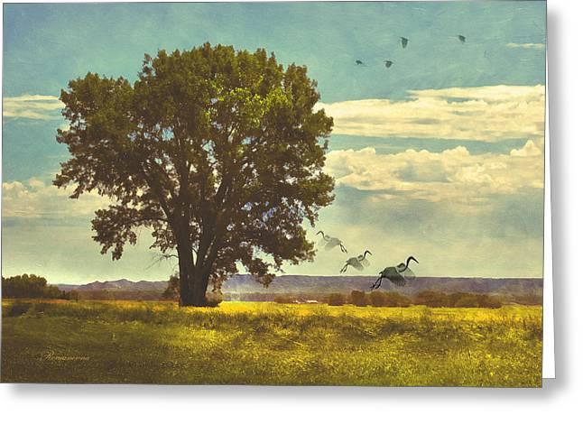 Four Seasons Summer Heat Greeting Card by Georgiana Romanovna
