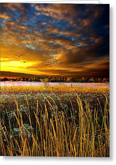 Foxfire Suite Greeting Card by Phil Koch