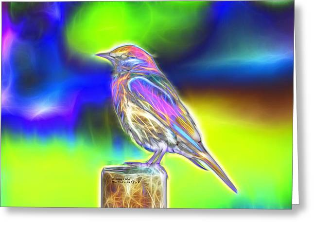 Fractal - Colorful - Western Bluebird Greeting Card