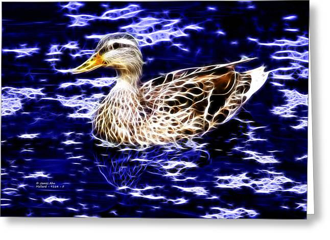 Fractal - Mallard In Pond- 9164 Greeting Card