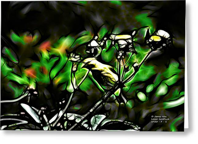 Fractal S - Take A Look - Lesser Goldfinch Greeting Card
