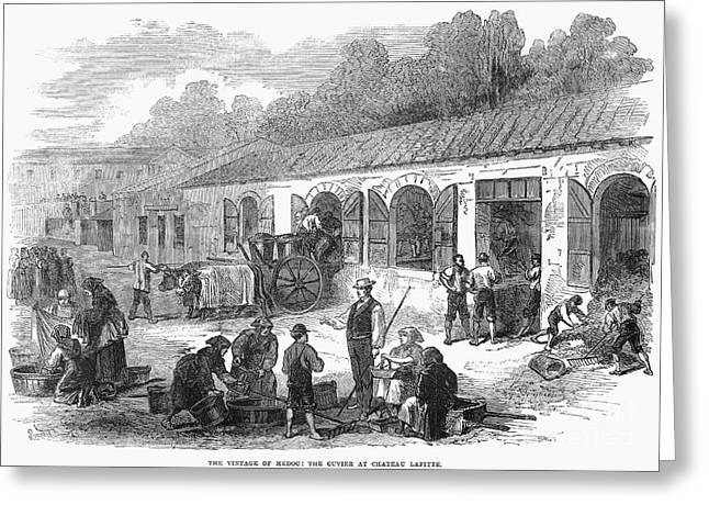France: Winemaking, 1871 Greeting Card by Granger