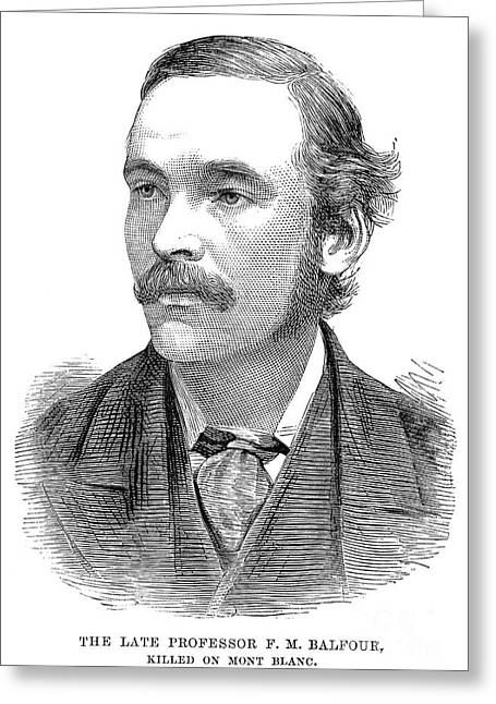 Francis Maitland Balfour Greeting Card by Granger