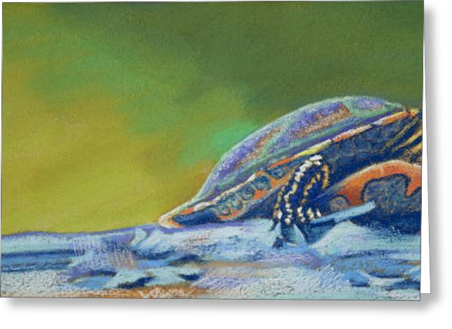 Frank's Turtle Greeting Card by Tracy L Teeter