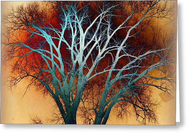 Freaky Tree 1 Greeting Card by Marty Koch