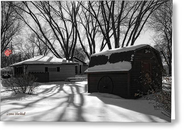 Freedom From Winter Greeting Card by Donna Blackhall