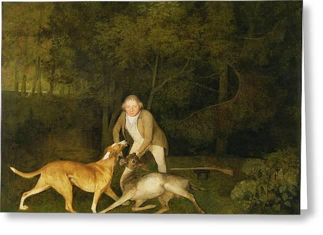 Freeman - The Earl Of Clarendon's Gamekeeper Greeting Card by George Stubbs