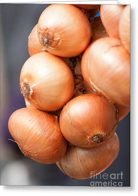 Greeting Card featuring the photograph French Onions by Andrew  Michael