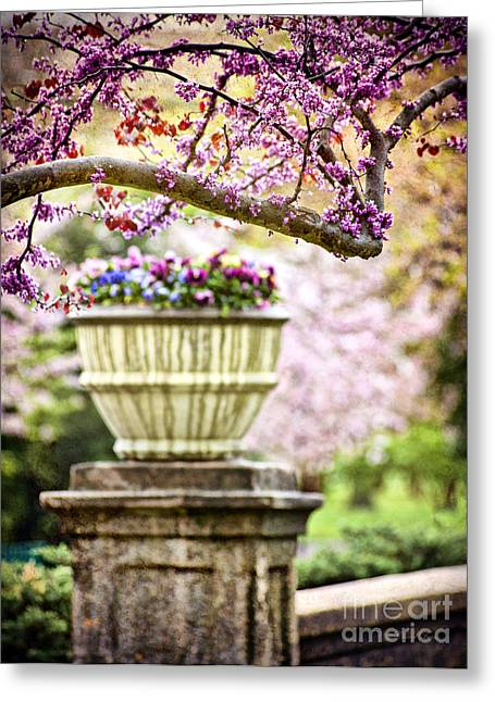 Greeting Card featuring the photograph Fresh As Springtime by Cheryl Davis