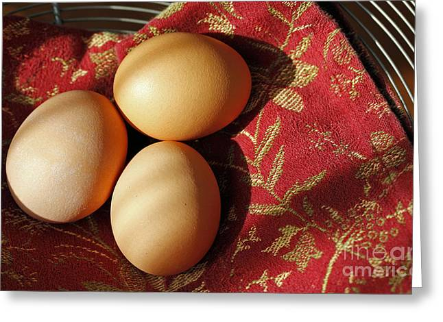 Fresh Eggs Greeting Card by Denise Pohl