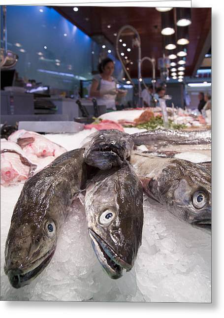 Fresh Fish On The Market Greeting Card by Matthias Hauser
