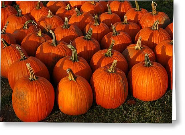 Fresh From The Farm Orange Pumpkins Greeting Card