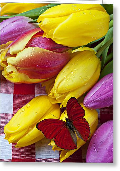 Fresh Tulips And Red Butterfly Greeting Card by Garry Gay