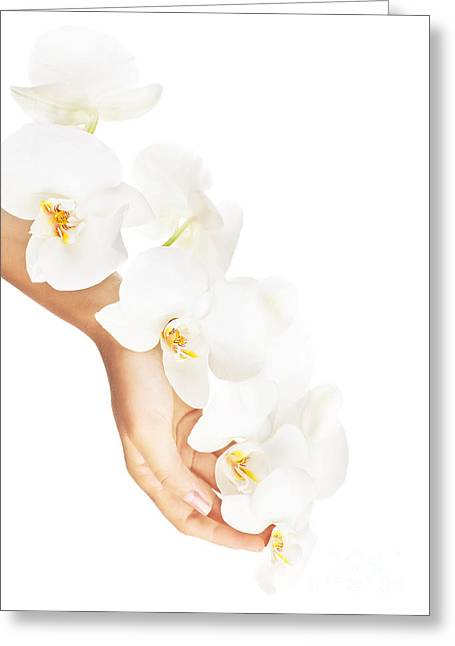 Fresh White Orchid In Female Hands Greeting Card by Anna Om