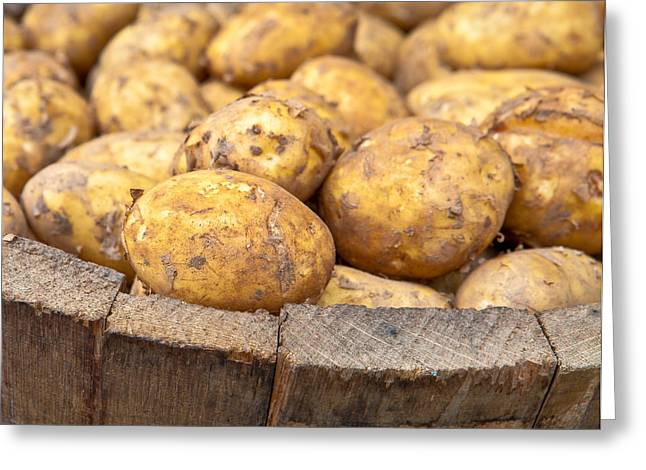 Freshly Harvested Potatoes In A Wooden Bucket Greeting Card