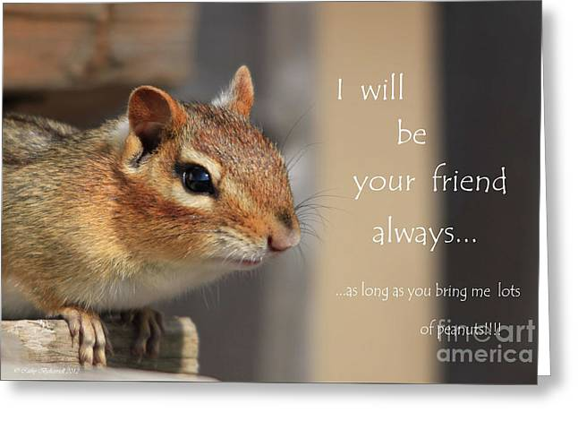 Friend For Peanuts Greeting Card by Cathy  Beharriell