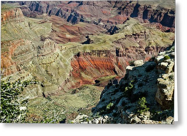 Greeting Card featuring the painting From Yaki Point 6 Grand Canyon by Bob and Nadine Johnston