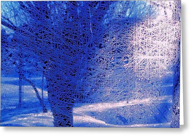 Greeting Card featuring the photograph Frost Etching by Joan Hartenstein