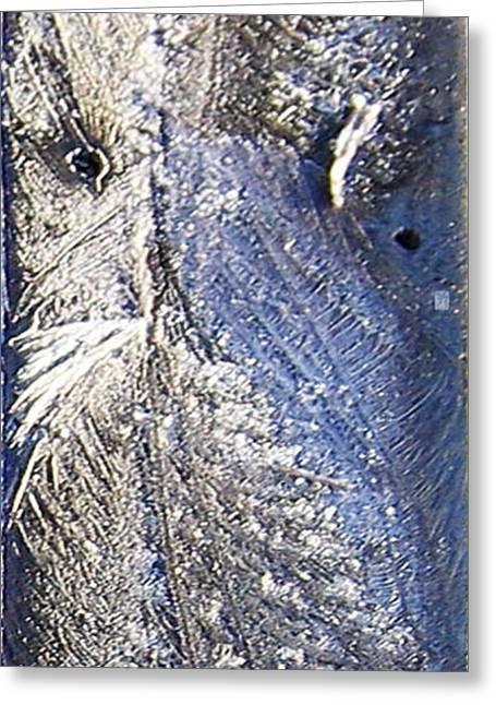 Frost Owl Greeting Card by Greta Thorsdottir