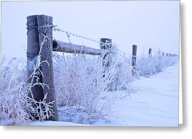 Frosty Morning Greeting Card by Monte Stevens