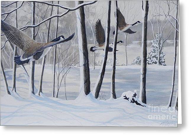 Frozen Over  Sold Prints Available Greeting Card