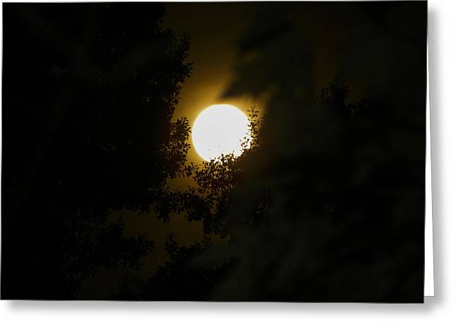 Greeting Card featuring the photograph Full Moon by Ester  Rogers