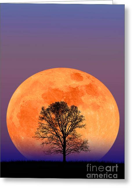 Full Moon Greeting Card by Larry Landolfi and Photo Researchers