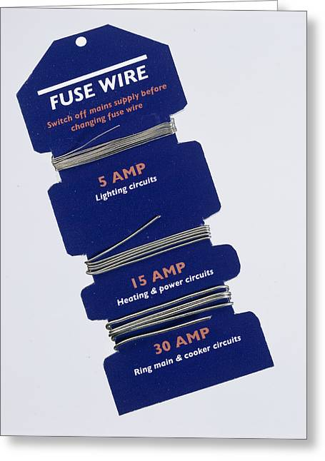 Fuse Wire Greeting Card by Sheila Terry