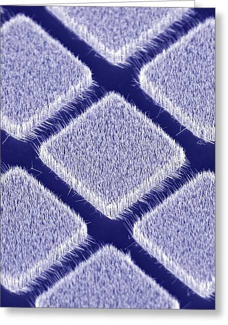 Gallium Nitride Nanowires, Sem Greeting Card