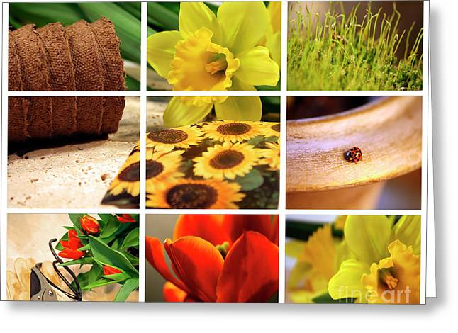 Garden Collage Greeting Card
