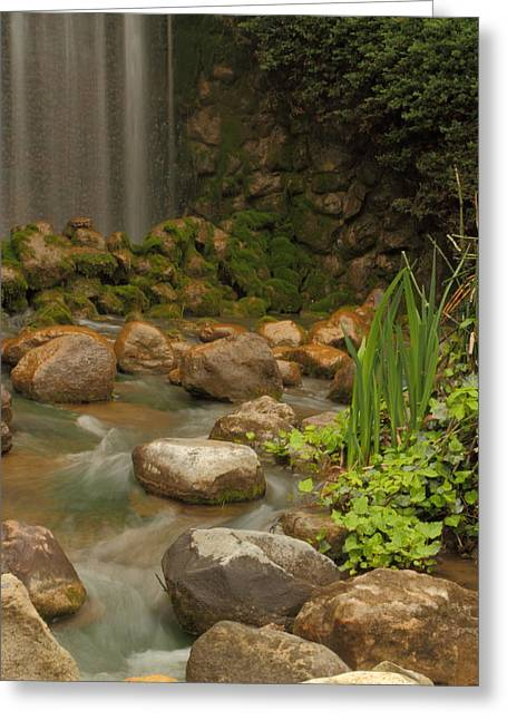 Greeting Card featuring the photograph Garden Falls by Coby Cooper