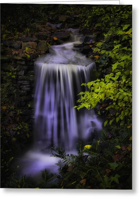 Garden Falls Greeting Card by Lynne Jenkins