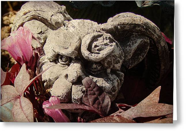 Garden Gargoyle Greeting Card by Brenda Conrad