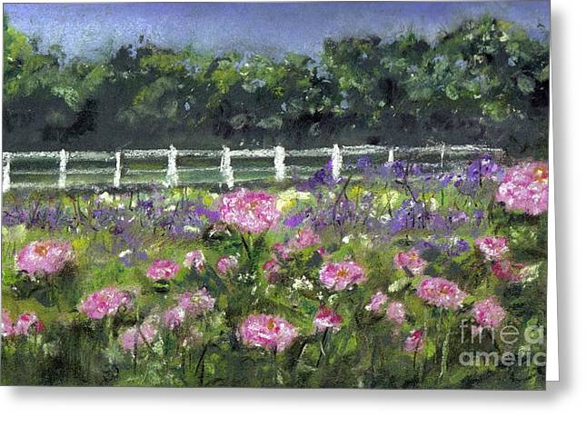 Garden In Vernfield Greeting Card