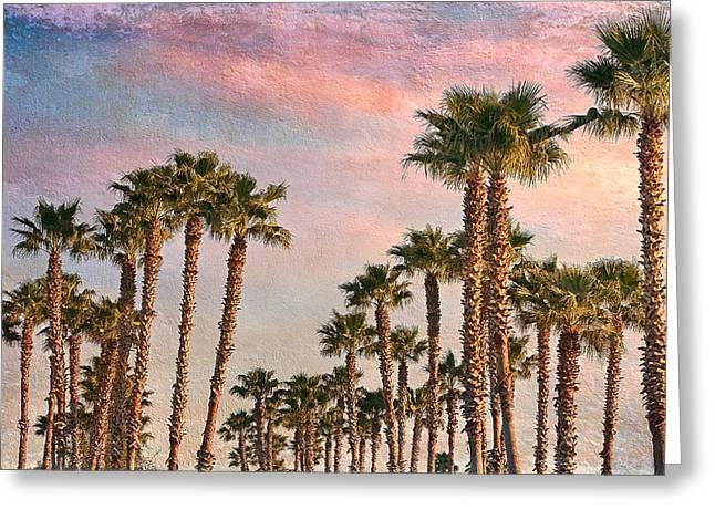 Garden Of Palms Greeting Card by Stephen Warren