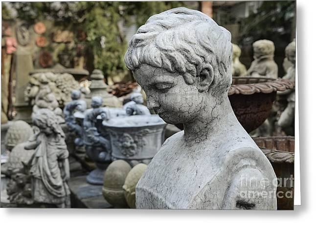 Garden Of Youth Greeting Card by John Greim
