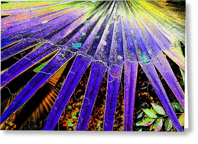 Garden Palm At Night Greeting Card