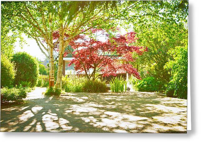 Garden Shade Greeting Card by Tom Gowanlock
