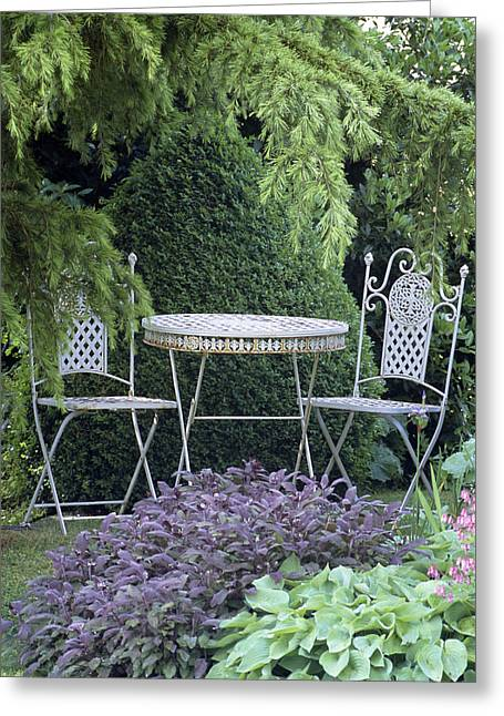 Garden Table And Chairs Greeting Card by Archie Young