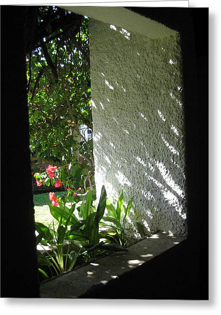 Garden Window Greeting Card